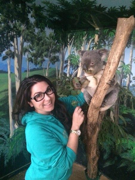 Koala_EatTravelMeet
